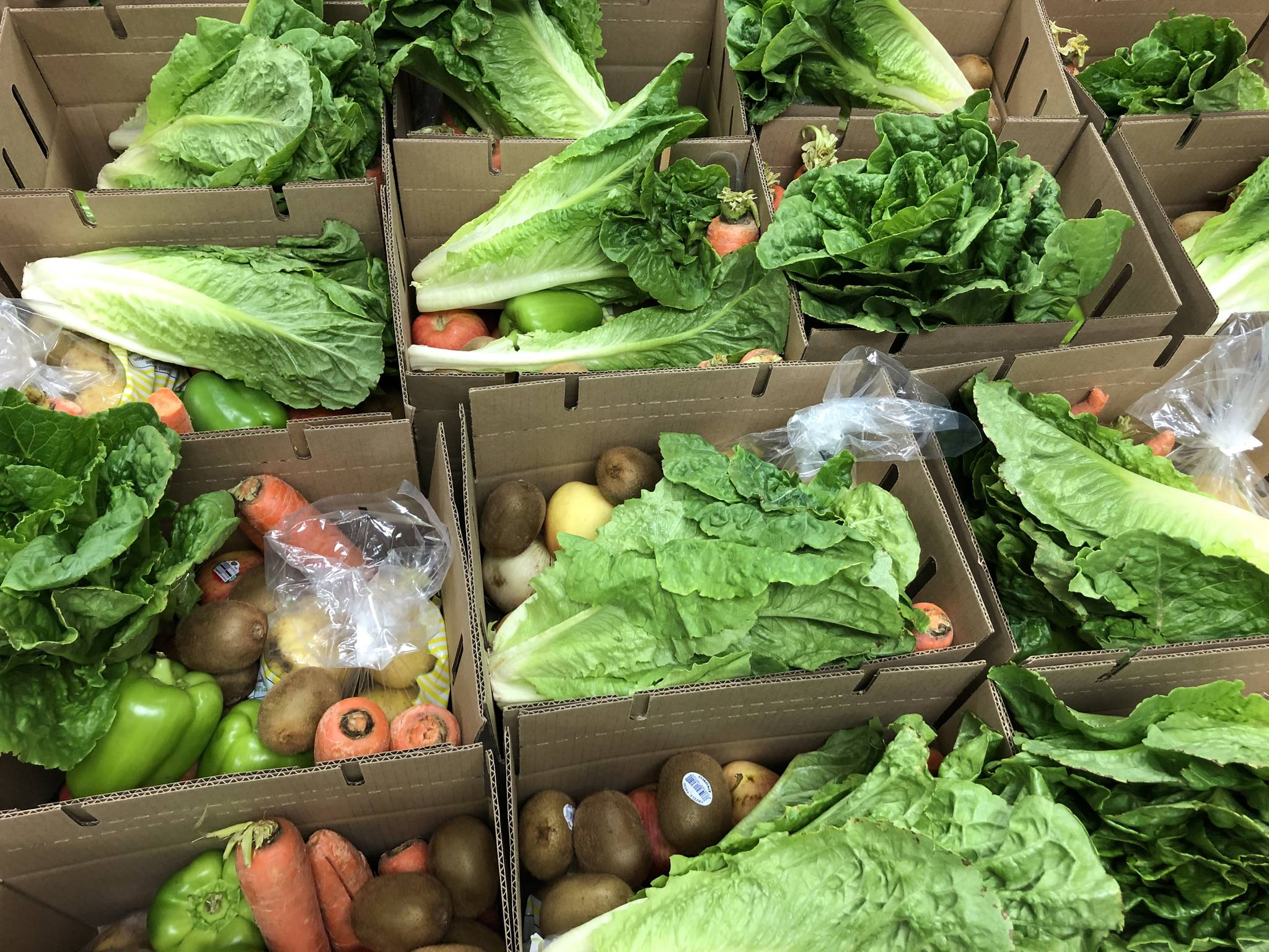 Good Food Boxes are packed in Gold River to go out to people of that community. Greenways is working on expanding the program to other communities including Campbell River. Photo supplied by Greenways Land Trust